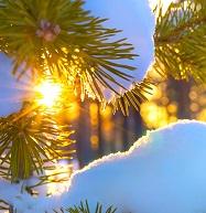 Сонце НІМЕЧЧИНА Новогодние туры в Европу Автобусные туры в Венгрию Клуб Мандривныкив