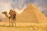 верблюд ХУРГАДА ЄГИПЕТ Tours in EGYPT тури в Єгипет Hurghada Клуб Мандрівників