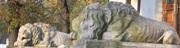 спящие львы возле Пороховой Башни ЛЬВОВ экскурсионный тур Замки и Дворцы Львовщины Клуб Мандривныкив LVIV UKRAINE