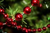КАРПАТИ НОВИЙ РІК РІЗДВО Різдвяні Свята Клуб Мандрівників Karpaty New Year Cristmas
