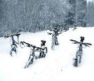 Сніг НІДЕРЛАНДИ Тури в Європу Автобусні тури в Нідерланди Клуб Мандрівників