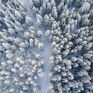 Зима БОЛГАРІЯ Тури в Європу Автобусні тури в Румунію Клуб Мандрівників